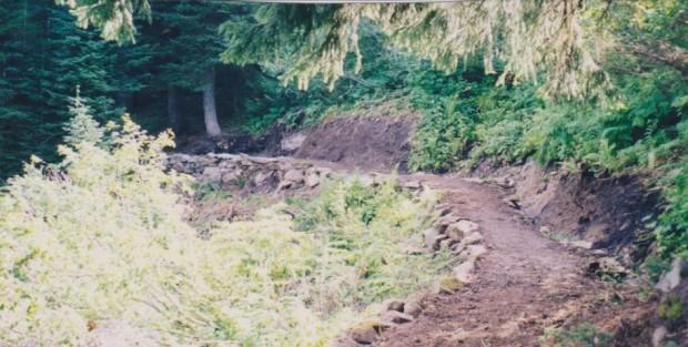 drainage fix 001